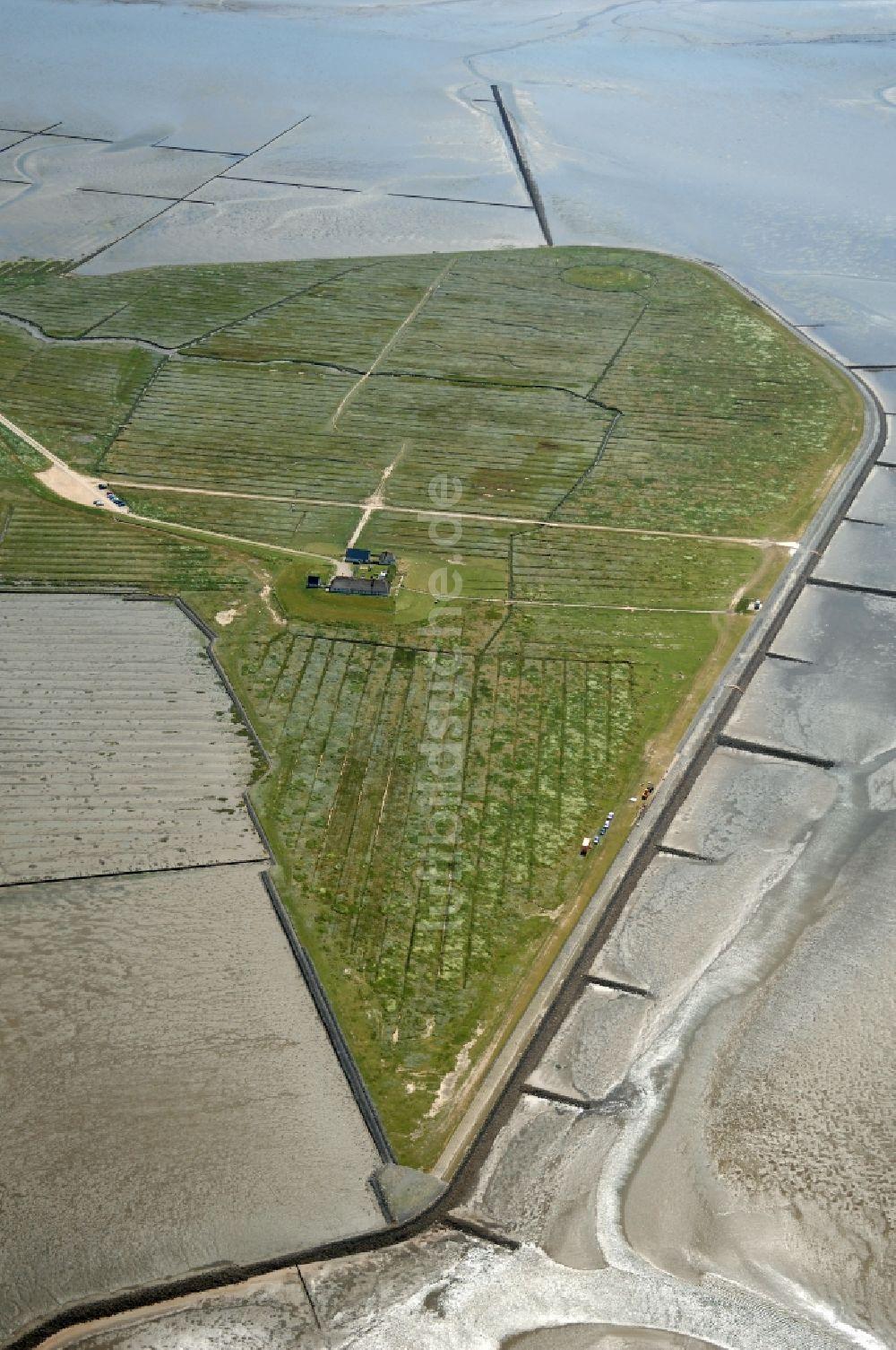Reußenköge aus der Vogelperspektive: Hamburger Hallig